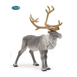 северен елен 50117
