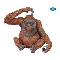 орангутан 50120