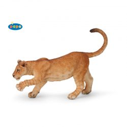 млада лъвица 50124